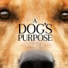 Contest: <i>A Dog&#8217;s Purpose</i> advance screening